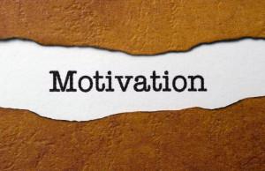 Motivation, Employee Motivation Survey